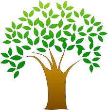 Informatique et écologie sont-elles compatibles?